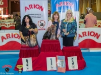 MINATERRA: YORKSHIRE TERRIER SPECIALITY SHOW OF AECYT.