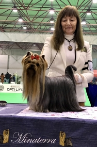 MINATERRA: INTERNATIONAL DOG SHOWS SANTAREM 2018-PORTUGAL.